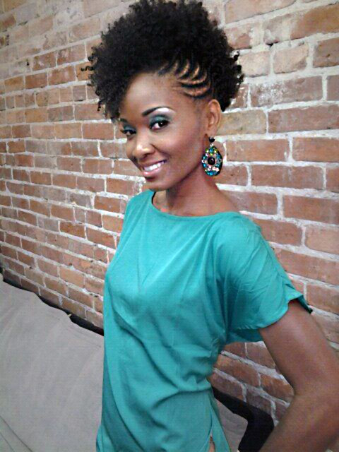 2013 Natural Hairstyles For African American Women 10 – The Style ...
