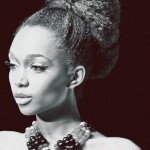 2013 Natural Hairstyles For African American Women 9
