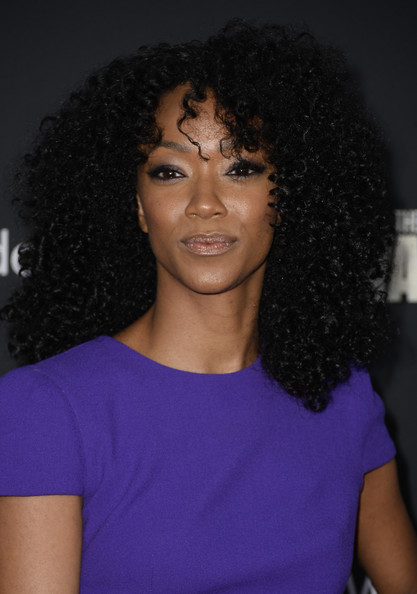 2014 Natural Hairstyles for Black Women 4