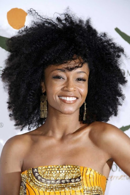 2014 Summer Hair Ideas for Natural Hair 2