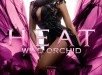 Beyonce's New Heat Wild Orchid Fragrance Ad