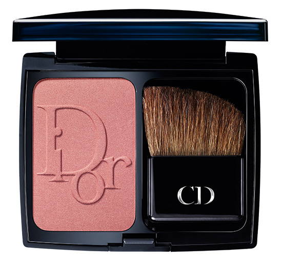 Dior Color Icons Fall 2014 Collection 3