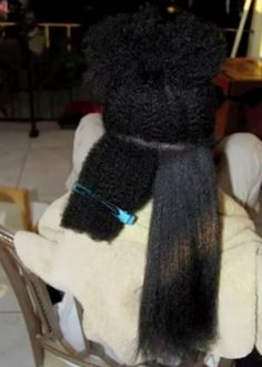 Natural Hair Shrinkage Is Deceiving - 20 Naturals Display Their Truth Hair Length3